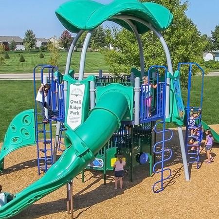 Playground Gelefish